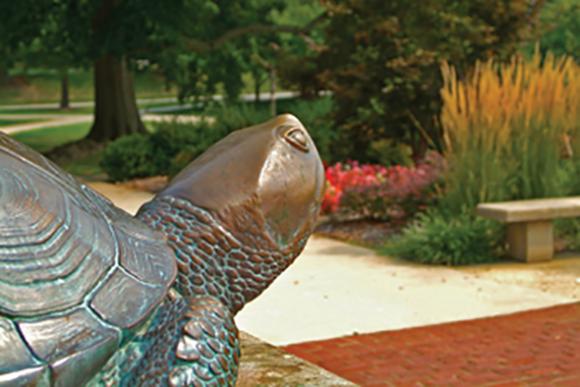 Testudo Bronze Statue